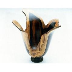Ébène du Mozambique 25x25x300mm